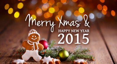 Buona Natale e buon 2015 dal team di Eviblu!